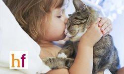 Las mascotas y los niños. ¿Qué hacer según la edad del niño?