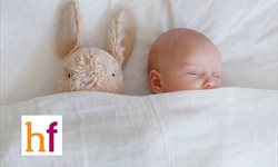 El conejito que quería dormirse : Primer cuento infantil para quedarse dormido